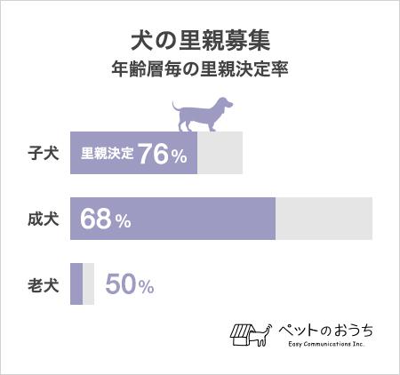 graph_2.jpg