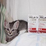 御礼メッセージ:むーちょ様(岡山県)より サムネイル画像