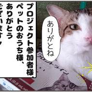 御礼メッセージ:シャーねこ家様(東京都)より サムネイル画像
