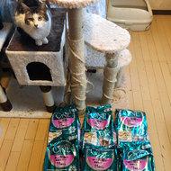 御礼メッセージ:人の生活環境と地域猫を考える会様(埼玉県)より サムネイル画像