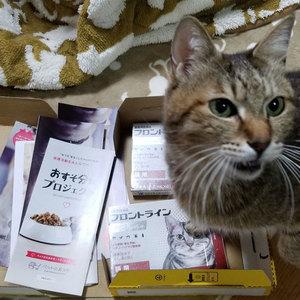 御礼メッセージ:みんにゃの家様(神奈川県)より サムネイル画像