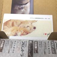 御礼メッセージ:NPO法人 HAPPY DOG TEAM様(岐阜県)より サムネイル画像