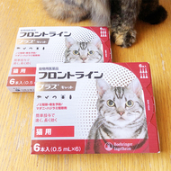 御礼メッセージ:Life With Cat 様(千葉県)より/ 第44回 サムネイル画像