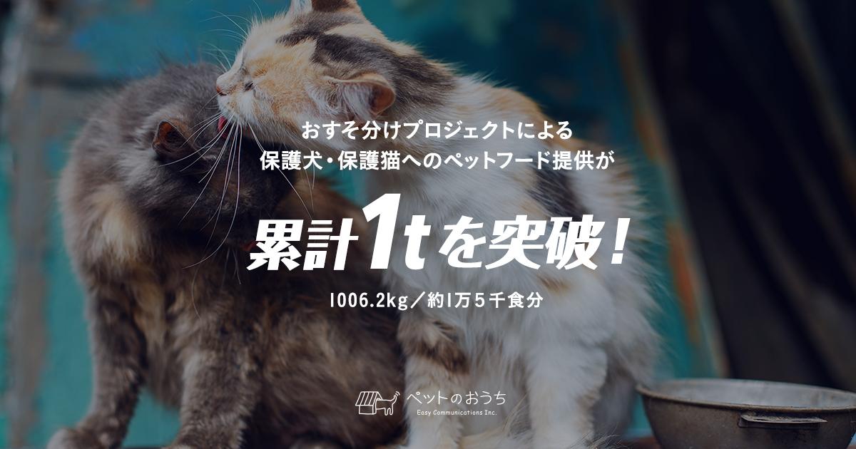 1t突破(4).jpg
